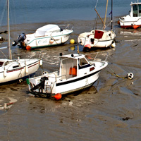 boats stuck in mud