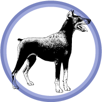 doberman badge