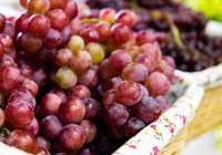 GrapesSquare