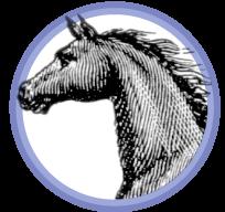 sm-horse-badge