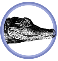 alligator badge