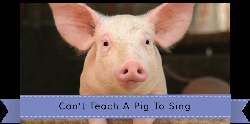 piggy-banner