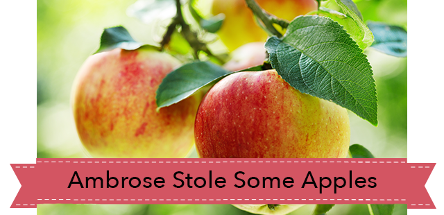 Ambrose-stole-some-apples